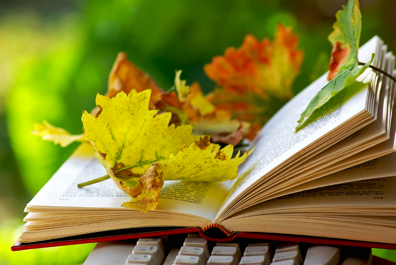November Literary Events